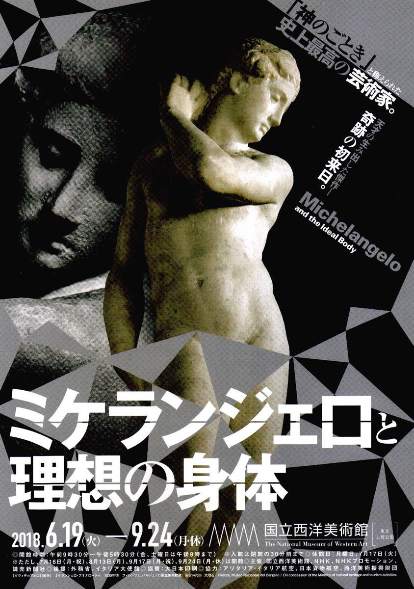 国立西洋美術館 ミケランジェロ 理想の身体